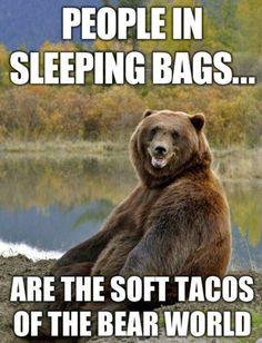 We're just bear snacks