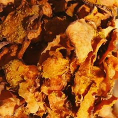 dehydrated sweet potato chips Clean Eating Plans, Clean Eating Diet, Crispy Chips, Sweet Potato Chips, Snack Recipes, Snacks, Dehydrator Recipes, Healthy Recipes For Weight Loss, Clean Eating Recipes