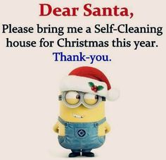Dear Santa, Please bring me a self-cleaning house for Christmas