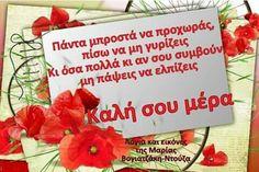 Beautiful Pink Roses, Good Morning, Buen Dia, Bonjour, Good Morning Wishes