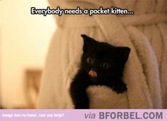 For An Emergency Stash Of Cuteness…