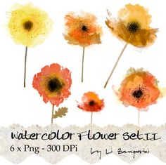 Bellos colores. Flores para tí...