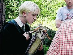 Tom Felton behind the scenes.