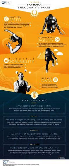 SAP Hana platform and retail industry big data analytics ~ Inventory Forecasting