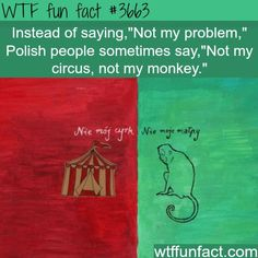 It's a Polish saying!?! - did not know that... WTF-more weird & interesting facts here