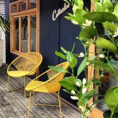 Front deck, Cottesloe Beach Shack, Barwon Heads, Victoria, Australia