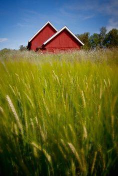typical swedish barns by Bernd Kinghorst on 500px