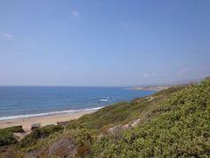 [Zypern] #3 - Turtle Beach und mehr ~ Book-Challenges