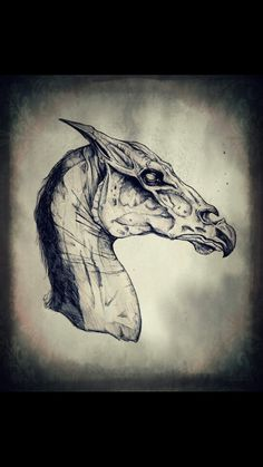 Harry Potter Thestral Sketch.