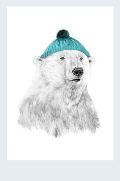 Bear in a hat print