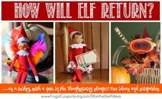 How will your Elf on the Shelf Return this Thanksgiving - As a Turkey? With a (free printable) note? In the Thanksgiving Planter? These Thanksgiving Elf on the Shelf Ideas and more on Frugal Coupon Living.