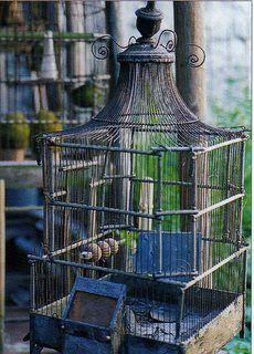 Déclinaison autour des cages à oiseau.. - Les Enfants du Marais💠Birdcages 💠More Pins Like This At FOSTERGINGER @ Pinterest💠