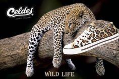 Explore The Wild Life 🐆 Live A Life Of Exploretheworld - maallure Wild Life, Cowboy Boots, Africa, Explore, Adventure, Live, Celebrities, Sneakers, Casual