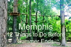 Memphis is an incredible city, full of fun places to eat and play.