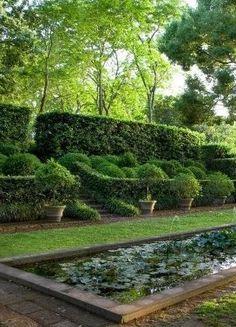 Beautiful, formal boxwoods, water, etc. Formal Gardens, Outdoor Gardens, Water Garden, Lawn And Garden, Italian Garden, Water Features In The Garden, The Secret Garden, Garden Spaces, Back Gardens
