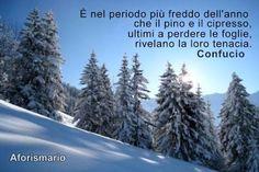 Aforismario®: Freddo - Aforismi, frasi e proverbi