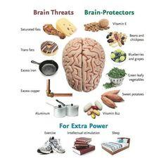 Brain Protector Foods