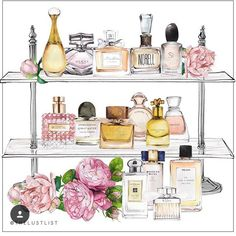 perfumes watercolor