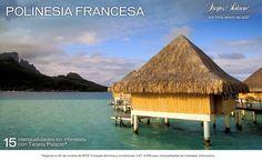 #LunasDeMielPalacio Esta increíble región nos ha permitido ver las mejores playas del mundo (Polinesia Francesa), la naturaleza más singular en Nueva Zelanda, y la fascinante diversidad cultural de Australia
