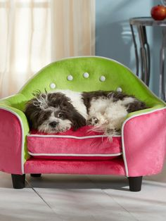 Ultra Plush Headboard Bed by Enchanted Home Pet at Gilt How ridiculously cute is this?!?!?  If only it were a little larger!
