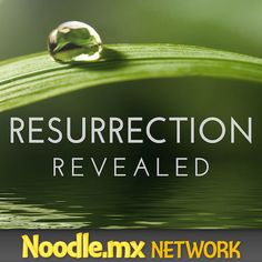 #Resheads; The fan feedback extravaganza ep of your #Resurrection Revealed podcast, all about the finale, out now! http://ResurrectionRevealed.com/RR049