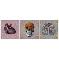 Lungs, Acrylic Paintings, Contemporary Art, My Arts, Skull, Heart, Modern Art, Contemporary Artwork