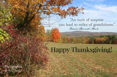 """""""An inch of surprise can lead to miles of gratefulness. Occam's Razor, Happy Thanksgiving, Grateful, Past, David, Canning, Happy Thanksgiving Day, Past Tense"""