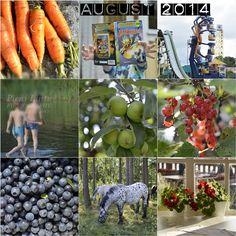August 2014 August 2014, Memories, Fruit, Memoirs, Souvenirs, Remember This