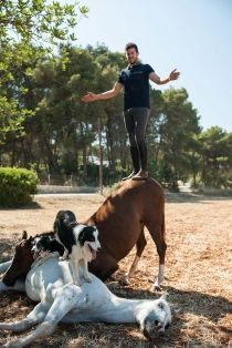 Every once in a while, come along a person whose passion and love for what they do is enough to take your breath away. One such person is Santi Serra, who has taken his natural raw passion and deep connection with his horses and other animals to another Ibiza Fashion, Camps, Horses, Dogs, Nature, Style, Animales, Swag, Naturaleza