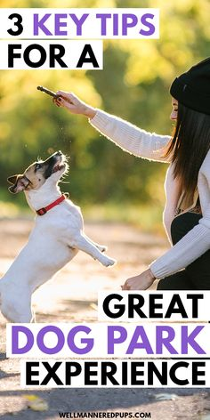How to have a great dog park experience with your dog. These 3 key tips make all the difference! Islamic Bank, Find People, Dog Park, Public Transport, Dog Owners, Your Dog, Puppies, Key, Dogs