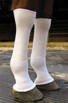 Silver Whinnys by Sox For Horses!  Equine Pastern Dermatitis, Wound/Sore Protection Fly Protection They belong in the barn med chest all year around.