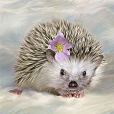 Hedgehog Baby Art Print  Fine Art Illustration Baby Nursery Decor Home Decor  8 x 10