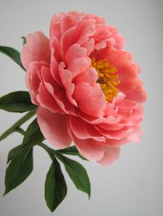 Handmade polymer clay peony – Famous Last Words Sugar Flowers, Real Flowers, Pink Flowers, Paper Flowers, Beautiful Flowers, Coral Peonies, Peony Painting, Watercolor Flowers, Peony Flower