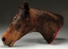 """The taxidermy horse's head used during  filming of the """"The Godfather"""" Acquired from a former employee of Paramount Studios, it sold for $11,000."""