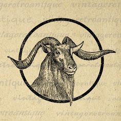 Printable Graphic Goat Head Download Horns Animal Image Digital Vintage Clip Art Jpg Png Eps 18x18 HQ 300dpi No.518 @ vintageretroantique.etsy.com