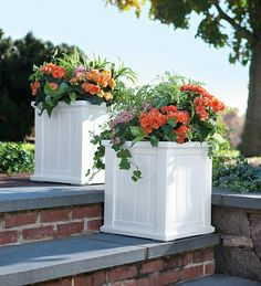 3' Window Box in {productContextTitle} from {brandTitle} on shop.CatalogSpree.com, your personal digital mall.