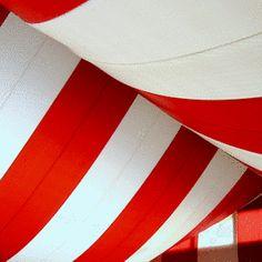 Vintage Centerpieces | Vintage Circus Theme Wedding