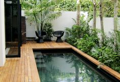 23 petites piscines pour une maison de ville Urban mini-pool and light wooden terrace in a courtyard with reading area and vegetation Small Backyard Pools, Small Pools, Outdoor Swimming Pool, Swimming Pools, Lap Pools, Indoor Pools, Pool Decks, Indoor Outdoor, Outdoor Living