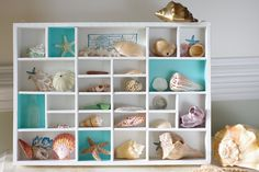 Beach Decor Vintage Seashell Shadow Box. $78.00, via Etsy.