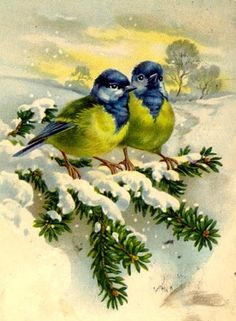 vintage postcard with birds