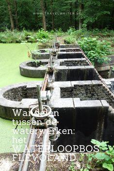 Wandelen tussen de waterwerken: het Waterloopbos in Flevoland Holland, Stuff To Do, Things To Do, Outdoor Fun, Outdoor Decor, Before I Die, Tai Chi, Netherlands, Fountain