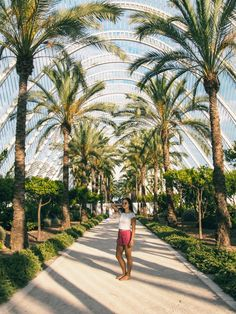The birthplace of paella, home to one of the 12 treasures of Spain, a place where innovation effortlessly meets tradition, here's what to do in Valencia. Madrid, Vacation Days, Vacation Destinations, Old Churches, Great Pic, Rest Of The World, Weekend Trips, Spain Travel, Historical Sites