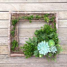 Square succulent wreath
