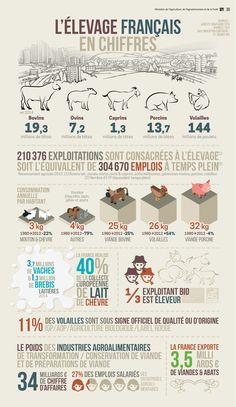 L'élevage en France.