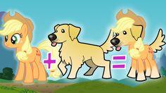 MASHUP: My Little Pony + Dog Breeds   Golden Retriever, Rarity, Pinkie Pie & More   Character Mashup