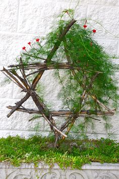 WoW. Simply beatiful. I love the moss and simplicity of it. I could make it out of sticks and then moss from Michael's... hmm office desk decor??!! ~ Star of David