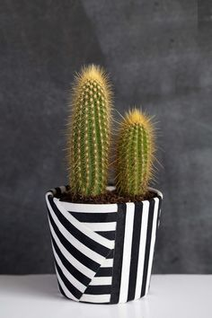 DIY Fabric Wrapped Cactus Pot - 20 DIY Weekend Projects – Easy & Fun Summer Projects Source by mydiy Pots D'argile, Clay Pots, Cute Diy Projects, Weekend Projects, House Projects, Painted Flower Pots, Painted Pots, Hand Painted, Cactus Pot