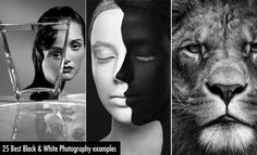 25 Best Black and White Photography examples and Tips for Beginners. Read full article: http://webneel.com/25-best-black-and-white-photography-examples-and-tips-beginners | more http://webneel.com/black-and-white | Follow us www.pinterest.com/webneel