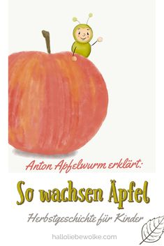 How do apples grow? Anton Apfelwurm explains it to children in kindergarten, kindergarten and elementary school. A story to read and study in autumn. Kindergarten Portfolio, In Kindergarten, Regenerative Medicine, Anti Inflammatory Diet, Anton, Quotes And Notes, Stories For Kids, Autumn Theme, Elementary Schools