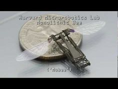 Harvard University engineers have come up with a production technique inspired by pop-up books and origami that allows tiny robots to be mass-produced in sheets. The Harvard Monolithic Bee (or Mobee), for example, turns from a flat shape into a 2.4-millimetre-tall robot in just one movement. The folding process takes less than a second.
